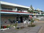 suwa-market.JPG